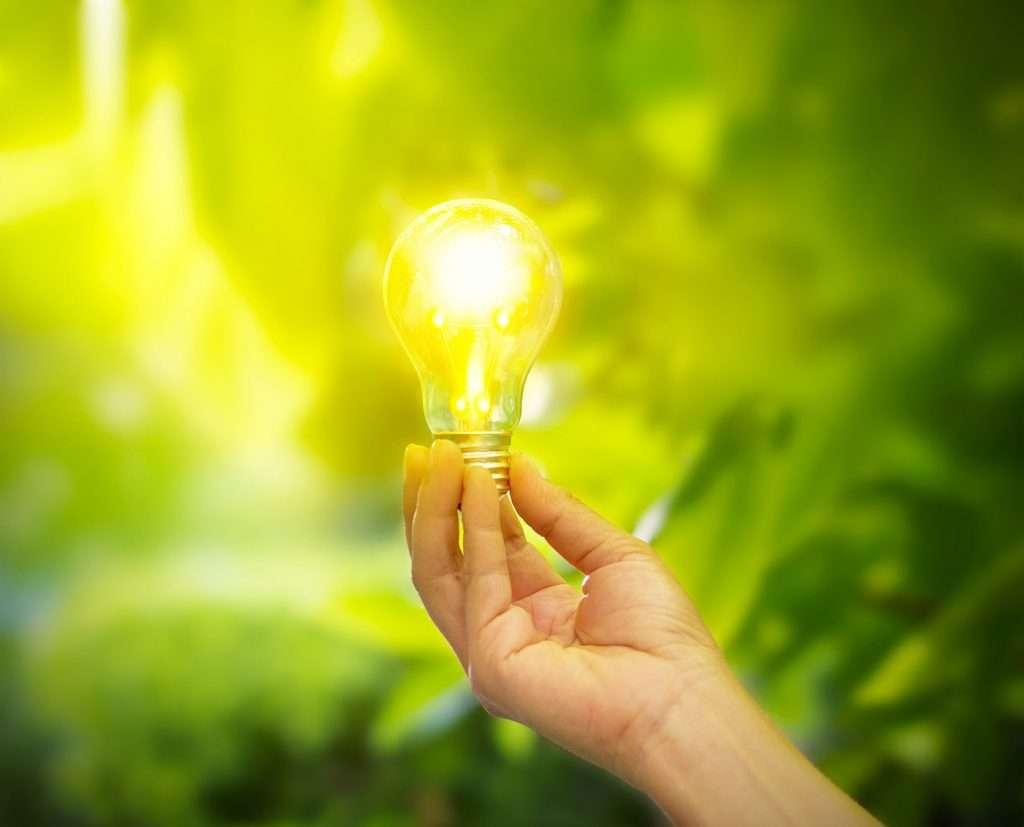 Lichtservice Nederland lichtonderhoud nieuwe verlichting LED verlichting